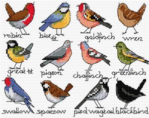 BLOG sélection d'oiseau - Simulation
